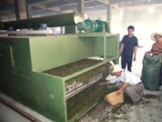 DWT series of drier for dehydrated vegetables